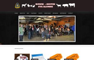 Website Development - Austin, tx